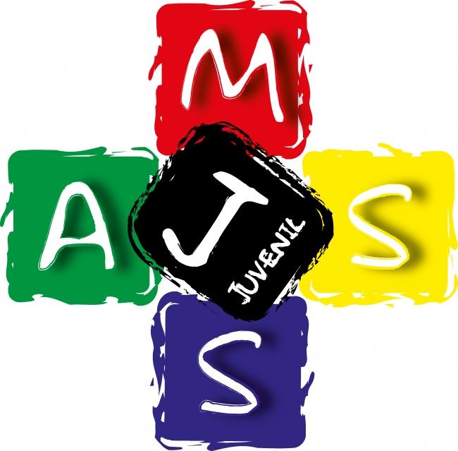 Comissão organizadora prepara MJS 2013